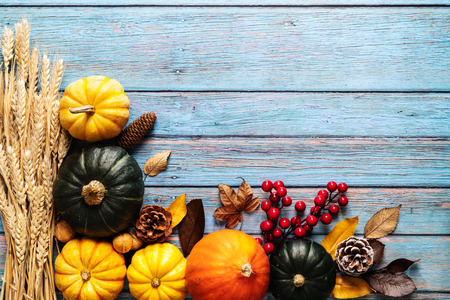 Happy Thanksgiving Day with pumpkin and nut on blue wooden background Stock Photo