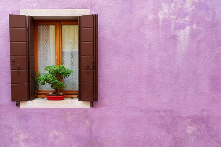 vintage wooden window on cracked purple cement background