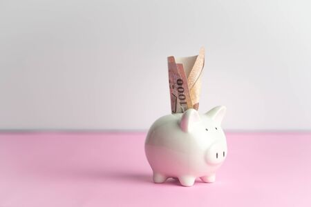 Money saving and donation concept, money on cute white piggy bank on pink table