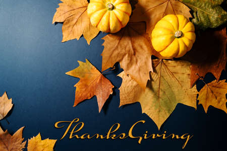 Happy Thanksgiving Day with maple leaves and pumpkin on blue background