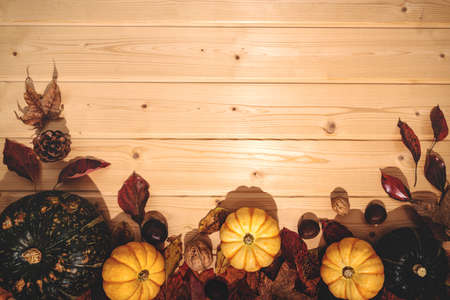 Happy Thanksgiving Day with pumpkin and nut on wooden background Zdjęcie Seryjne