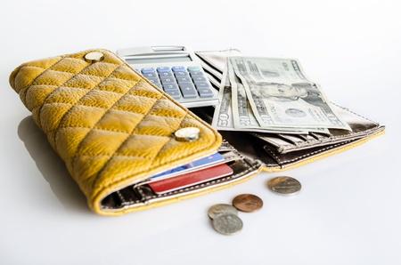 Women wallet and money Standard-Bild