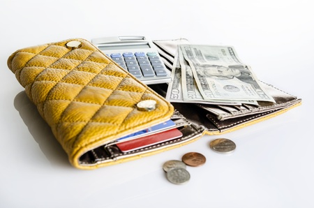 money to burn: Women wallet and money Stock Photo