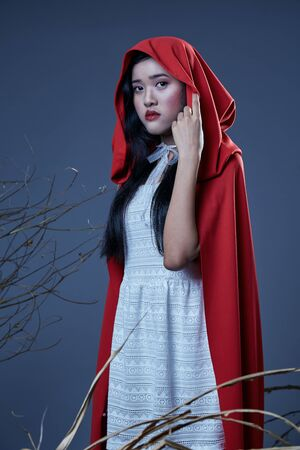 little red riding hood: the little red riding hood girl in a costume