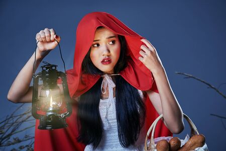 the little red riding hood lost in the wood