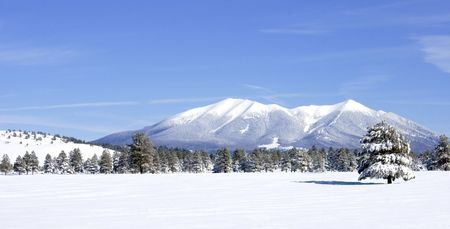coconino national forest: San Francisco Peaks in Coconino National Forest of Northern Arizona covered in newly fallen snow viewed from a distant prairie on a clear day.