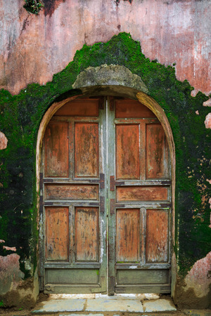 Old wooden door with green moss wall