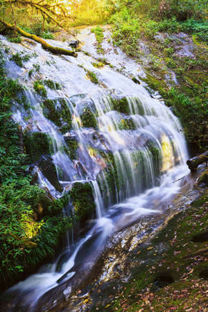 Waterfall in kew mae pan, Doi Inthanon, Chiang Mai, Thailand photo