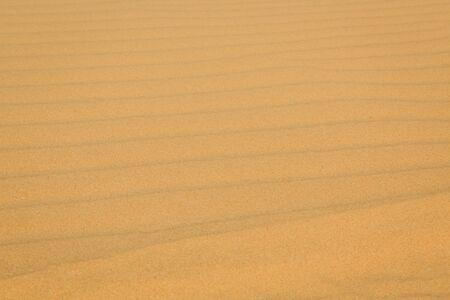 White sand dune in Mui Ne, Vietnam photo