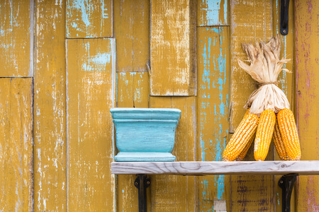 drying corn cobs: Dry corn cob and vase on wooden rack with yellow wooden wall background grunge style
