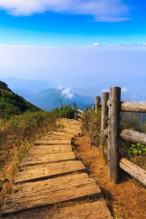 foot path: foot path in mountain, Kew Mae Pan, Doi Inthanon national park, Chiang Mai, Thailand Stock Photo