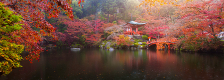 pond: Panorama view of Daigo-ji temple with colorful maple trees in autumn, Kyoto, Japan