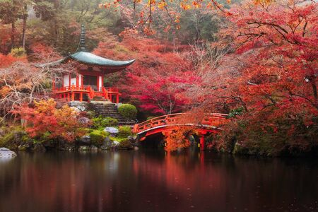 colorful maple trees: Daigo-ji temple with colorful maple trees in autumn, Kyoto, Japan Editorial