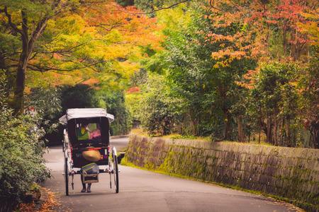 Japanese girls with Yukata dress on rickshaw in autumn, Maruyama park, Kyoto, Japan