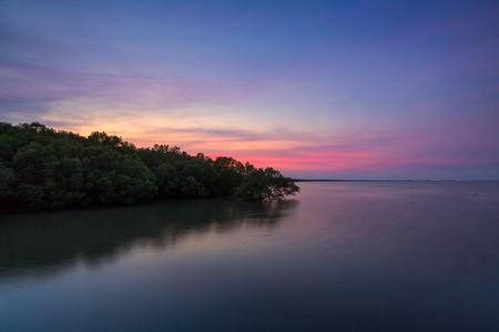 Mangrove forest on sea at sunset in Laem Phak Bia, Ban Laem, Phetchaburi, Thailand Banco de Imagens - 79409918