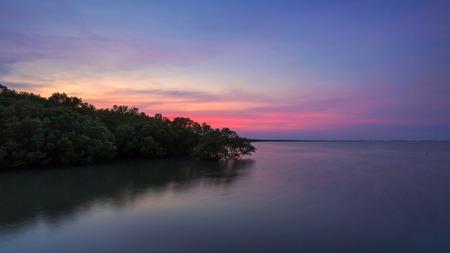Mangrove forest on sea at sunset in Laem Phak Bia, Ban Laem, Phetchaburi, Thailand Banco de Imagens - 81775705