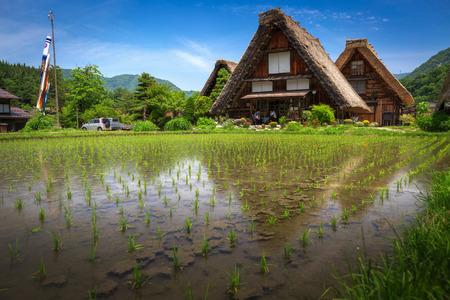 Shirakawa Japan May 26 2018: Historic Villages of Shirakawa-go and Gokayama in summer, travel landmark in japan