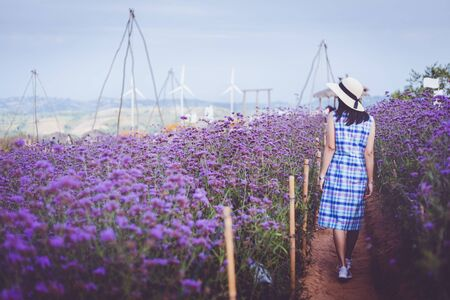 Young asian travel woman with dress and hat walking in purple flower (Murdannia giganteum or Thai lavender) field at Phetchabun, Thailand
