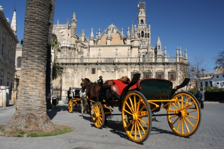 driven: horse driven coach in front of cathedral in Seville