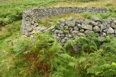 sheepfold: detail of dry stone sheepfold