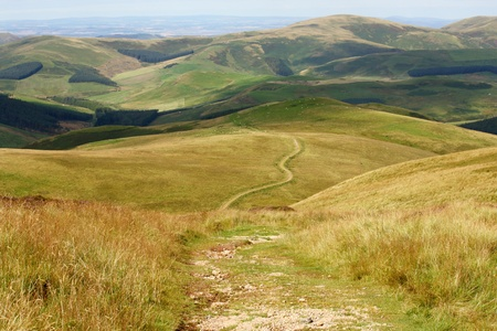 footpath across golden grassy hills in Northumberland National Park 스톡 콘텐츠