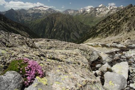 Creguena Valley in Aragon Pyrenees