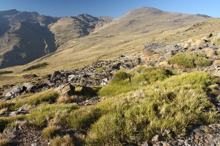grassy slopes in Sierra Nevada National Park photo