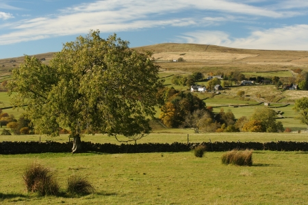 rolling hills in Northumberland, England
