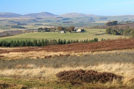moorland in Northumbria near Rothbury