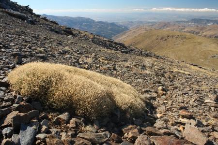 barren slopes in Sierra Nevada National Park, Spain Stock Photo - 16193095