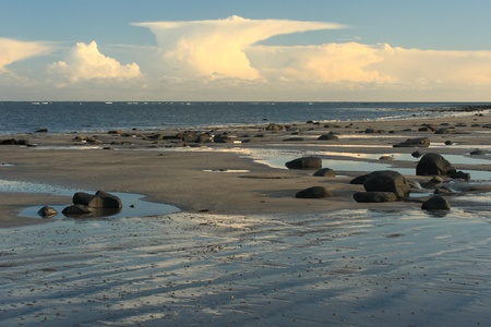 low tide: Northumberland coast at low tide
