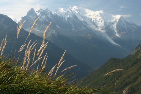 massif: grass blades with blurred mountains in background Stock Photo