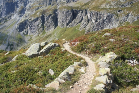 snaking footpath in Aiguilles Rouges Natural Reserve, France Stock Photo