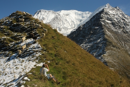 tourist watching grazing sheep in French Alps photo