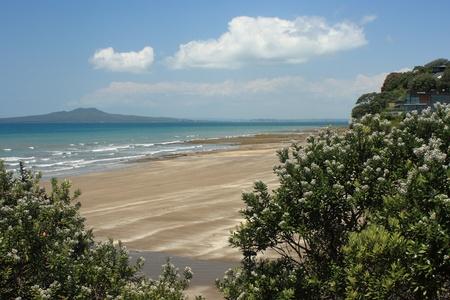 view of Rangitoto Island, New Zealand Stock Photo