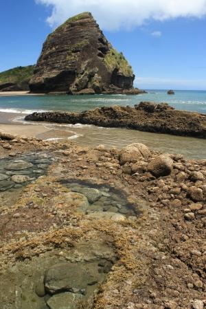 Taitomo Island, Piha, New Zealand