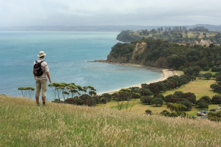 walker admiring view from Shakespear Regional Park