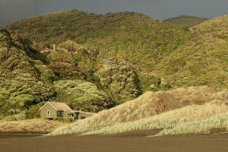 Waitakere Ranges near Karekare Beach, New Zealand 스톡 콘텐츠