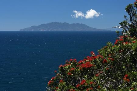 barrier island: Great Barrier Island, New Zealand