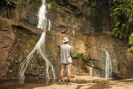 ranges: Fairy falls at Waitakere Ranges, New Zealand