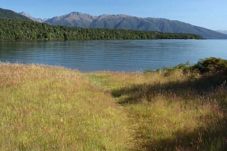 Te: grassland at lake Te Anau, New Zealand Stock Photo