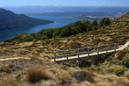 boardwalk above lake Te Anau, New Zealand Stock Photo - 18327290