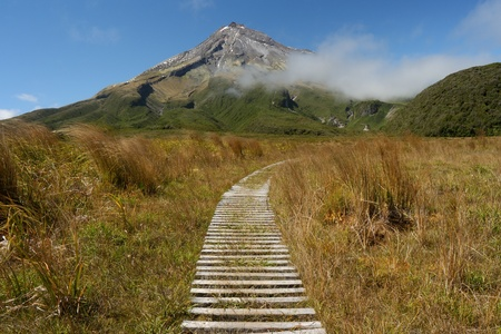 boardwalk across swamp near mount Taranaki, New Zealand