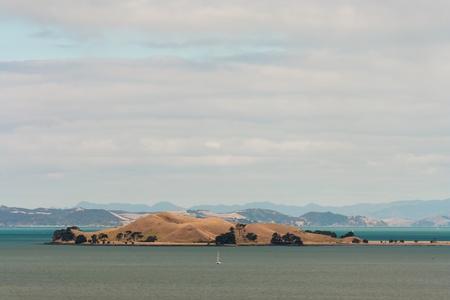 browns: Browns Island in Hauraki Gulf