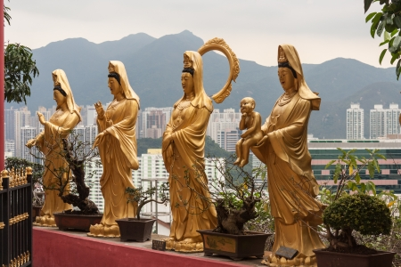 statues in Buddhist temple in Sha Tin photo