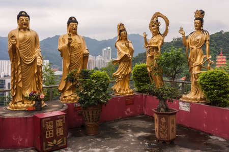 Buddhist temple in Sha Tin, Hong Kong Stock Photo - 19113116