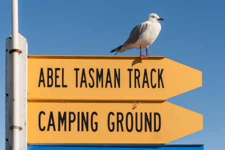 Abel Tasman Track sign with red-billed seagull 스톡 콘텐츠