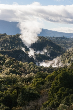 volcanoes in thermal valley in Rotorua, New Zealand photo