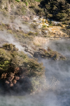 hot spring lake in Waimangu photo