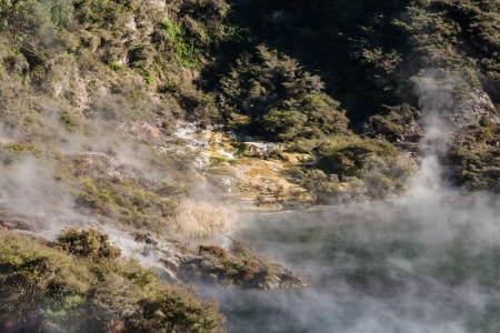 steam rising from hot spring lake in Waimangu photo